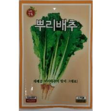 배추 뿌리배추  2000s(약2000개/봉)