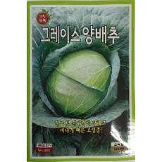 양배추 그레이스양배추  500s(약500개/봉)