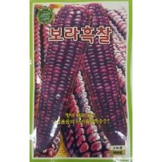 옥수수 보라흑찰옥수수  100s(약100개/봉)